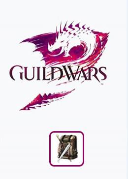 Cheap Guild Wars Product & Services Heavy Equipment Pack