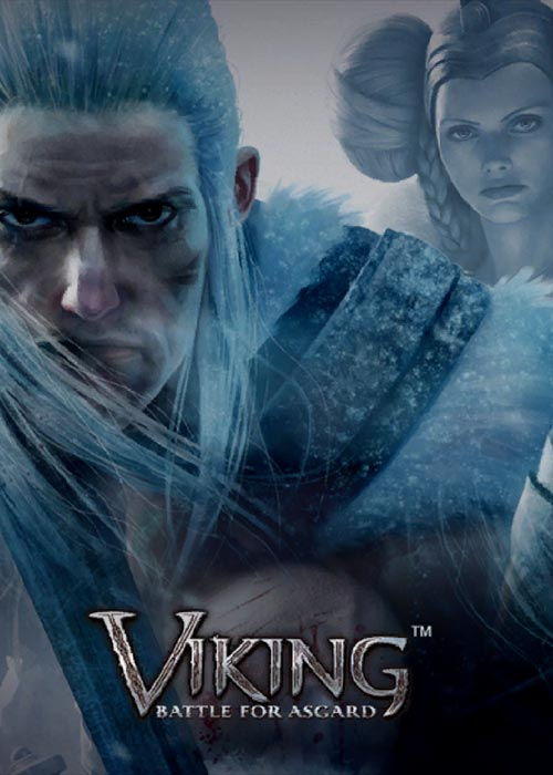 Cheap Steam Games  Viking Battle for Asgard Steam CD Key