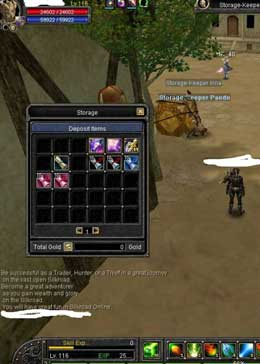 Cheap Silkroad Online Ceres ZB9303 Lv116 Account